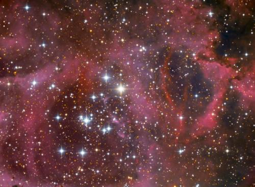 Rosettennebel mit NGC2244